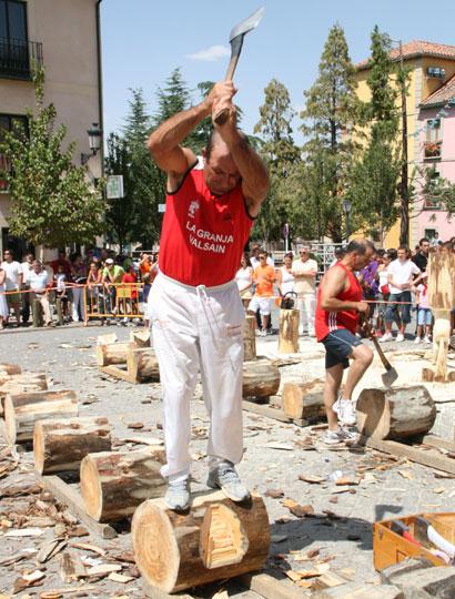Corta de troncos - Arboles pais vasco ...